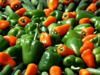 Lässt sich vegetarisch grillen: Paprika