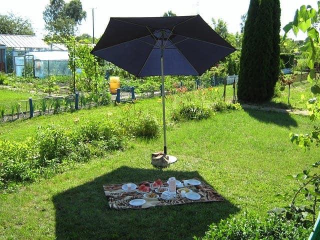 Grillen beim Picknicken im Park